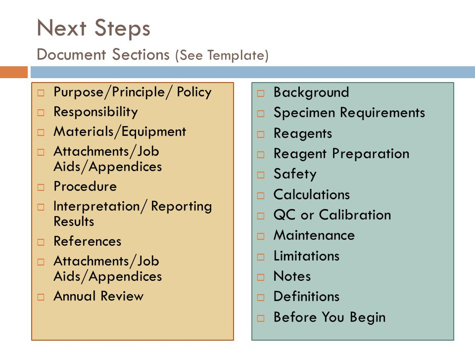 Next Steps Document Sections (See Template)