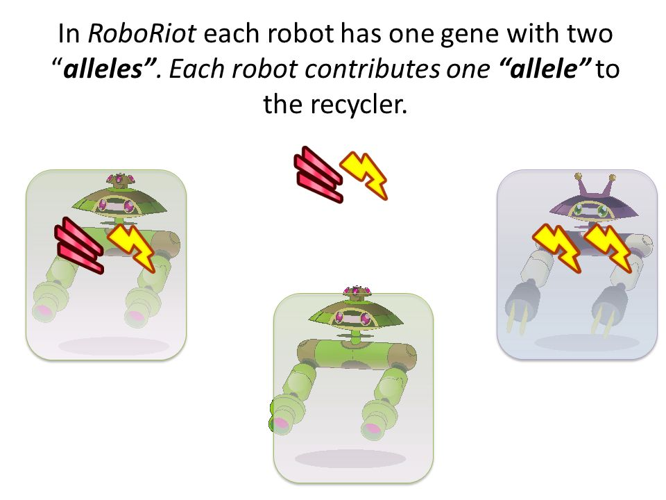 In RoboRiot each robot has one gene with two alleles
