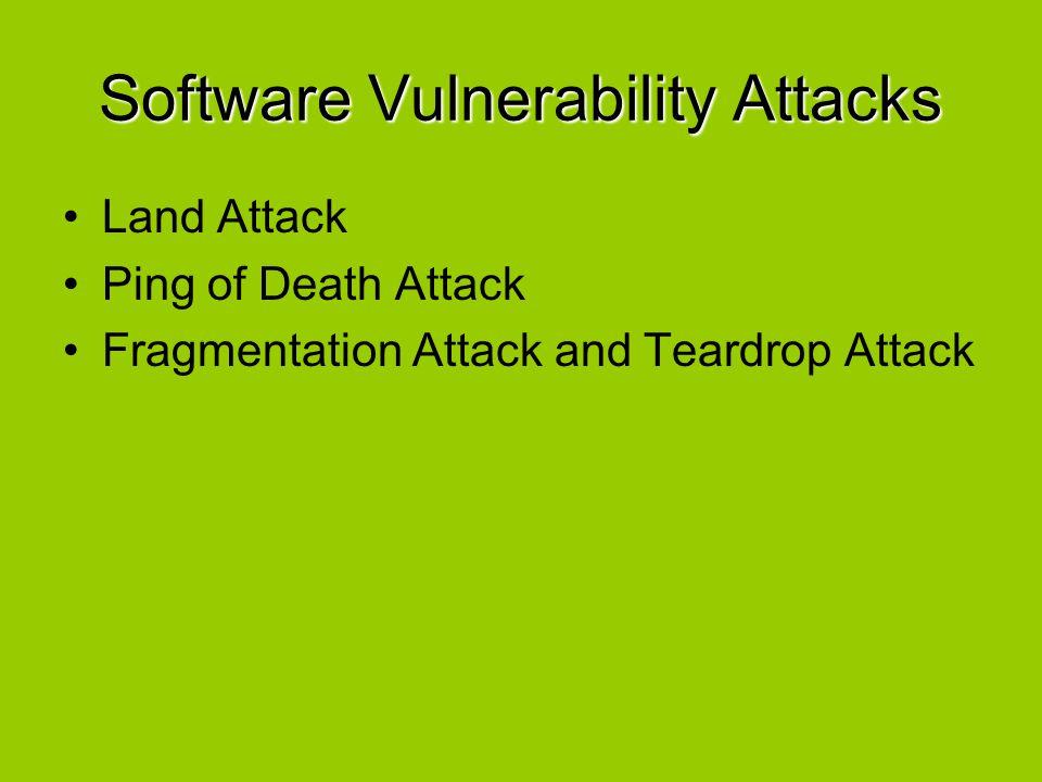 Software Vulnerability Attacks