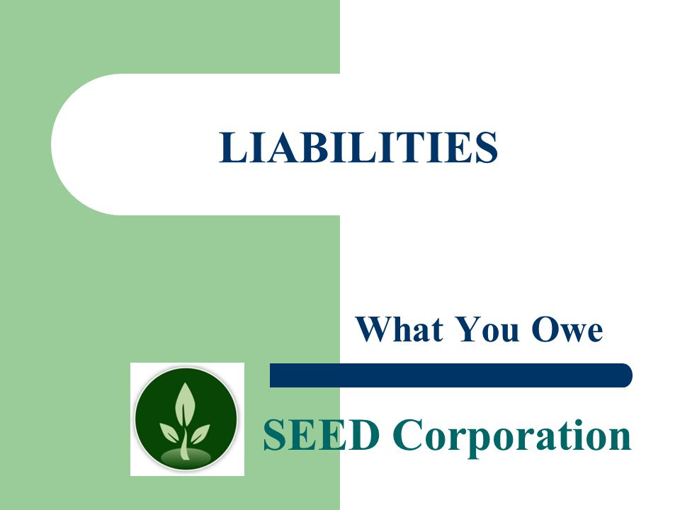 LIABILITIES What You Owe