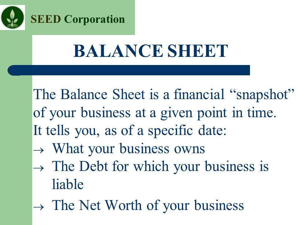 BALANCE SHEET The Balance Sheet is a financial snapshot