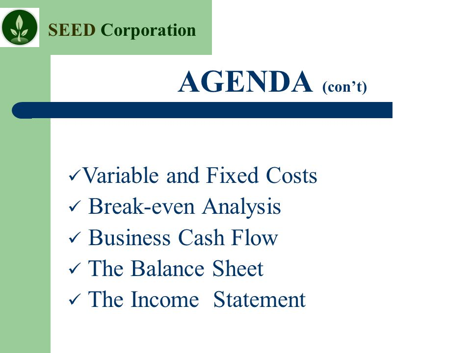 AGENDA (con't) Variable and Fixed Costs Break-even Analysis