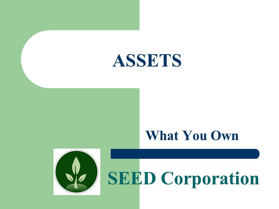 ASSETS What You Own