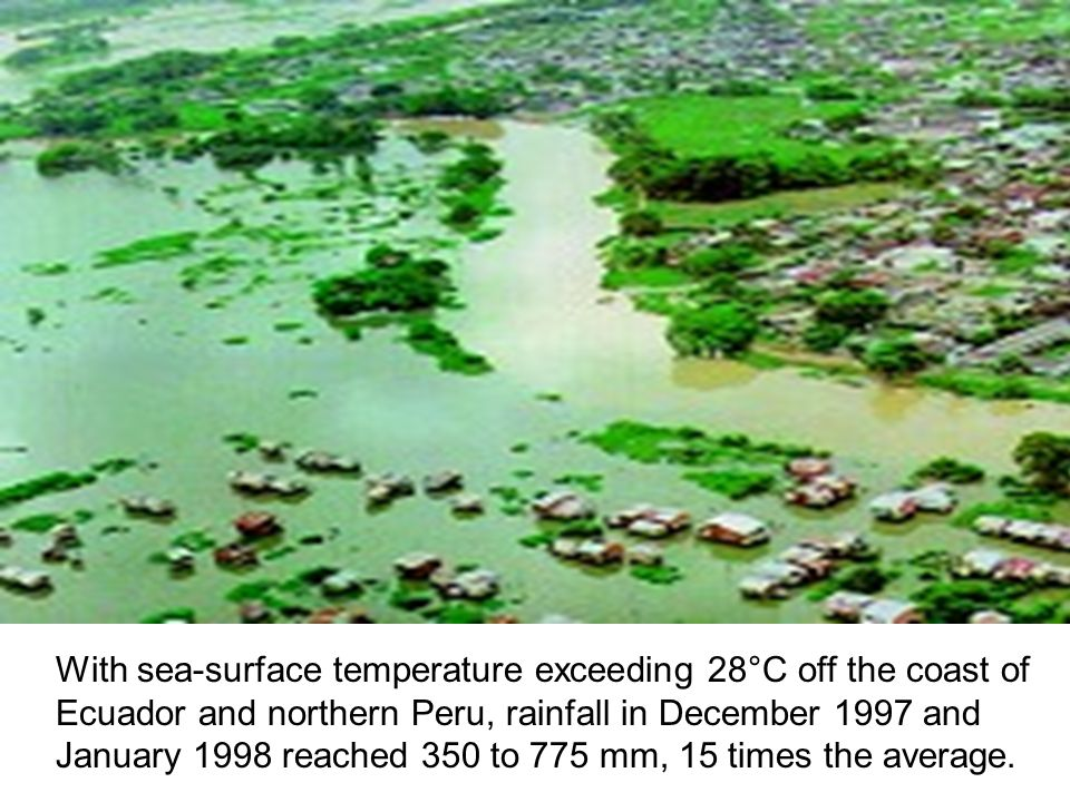 With sea-surface temperature exceeding 28°C off the coast of Ecuador and northern Peru, rainfall in December 1997 and January 1998 reached 350 to 775 mm, 15 times the average.