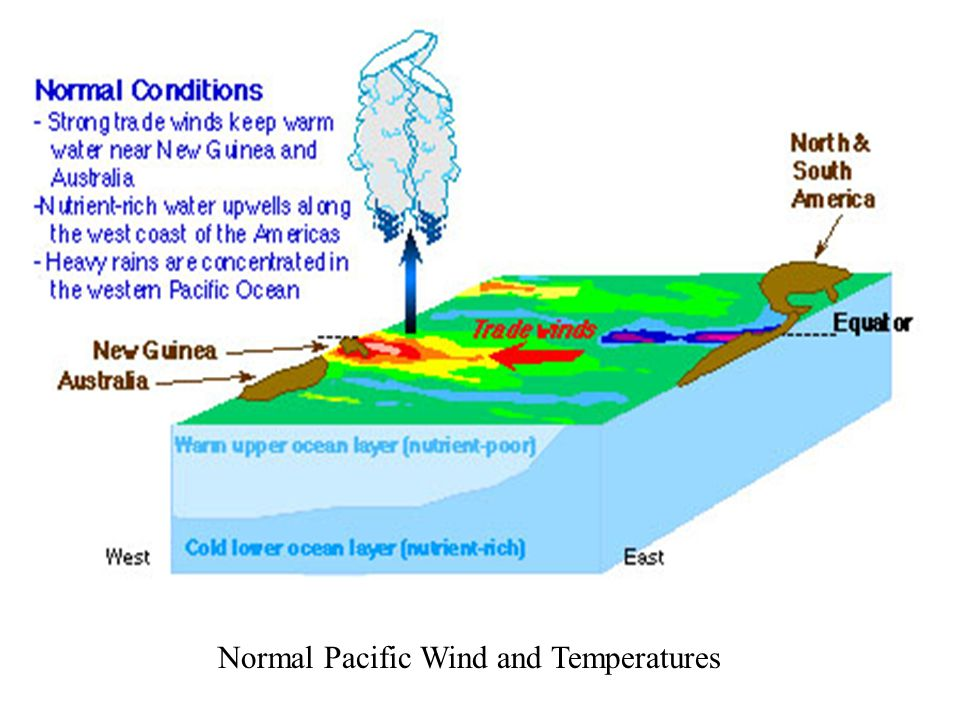 Normal Pacific Wind and Temperatures