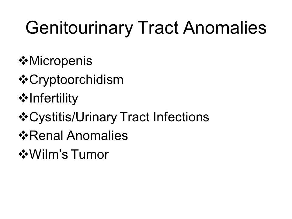 Genitourinary Tract Anomalies