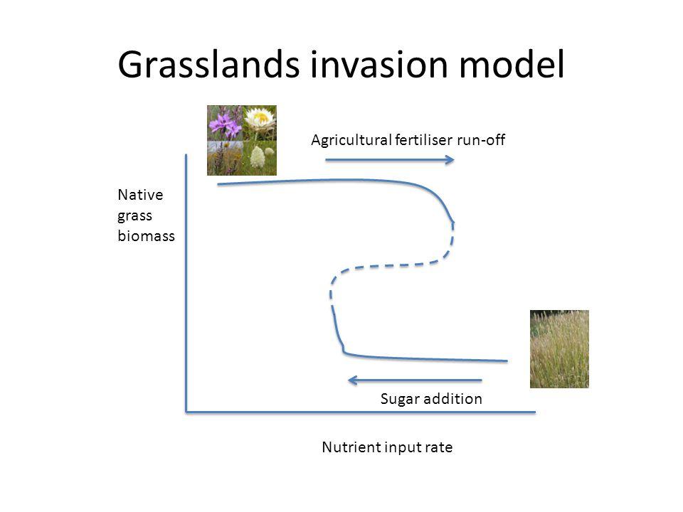Grasslands invasion model