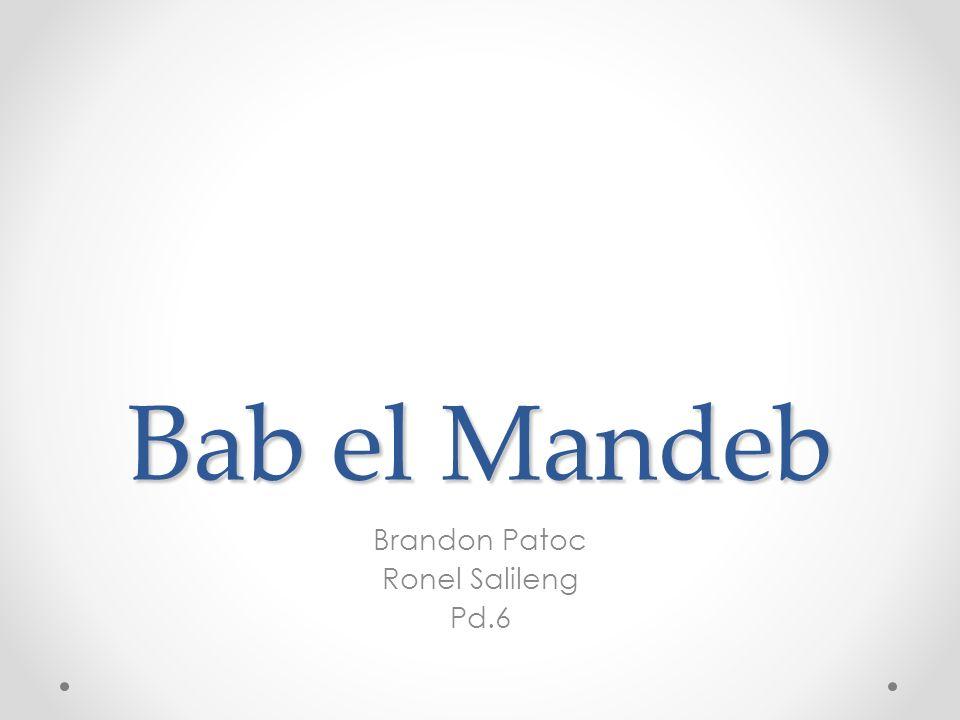 Brandon Patoc Ronel Salileng Pd.6