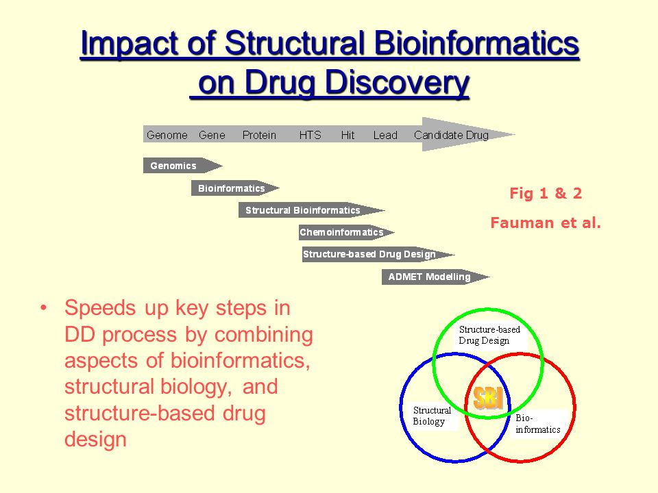 Impact of Structural Bioinformatics on Drug Discovery
