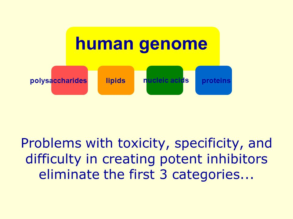 human genome polysaccharides. nucleic acids. proteins. lipids.