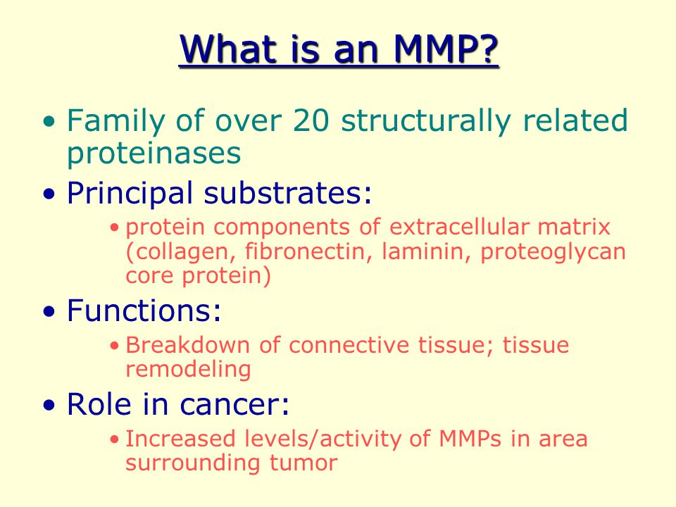 What is an MMP Family of over 20 structurally related proteinases