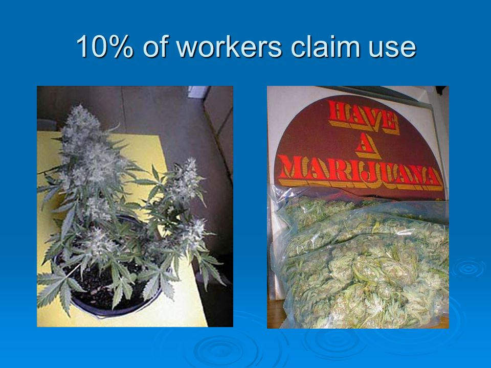 10% of workers claim use