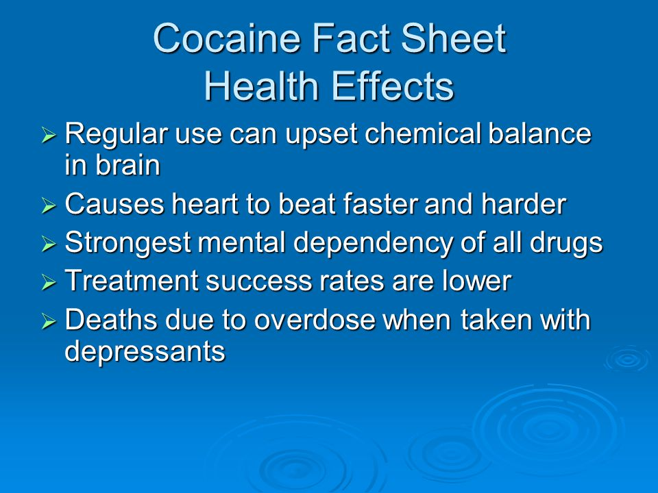 Cocaine Fact Sheet Health Effects