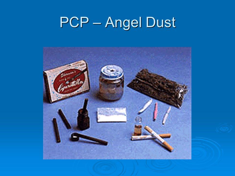 PCP – Angel Dust