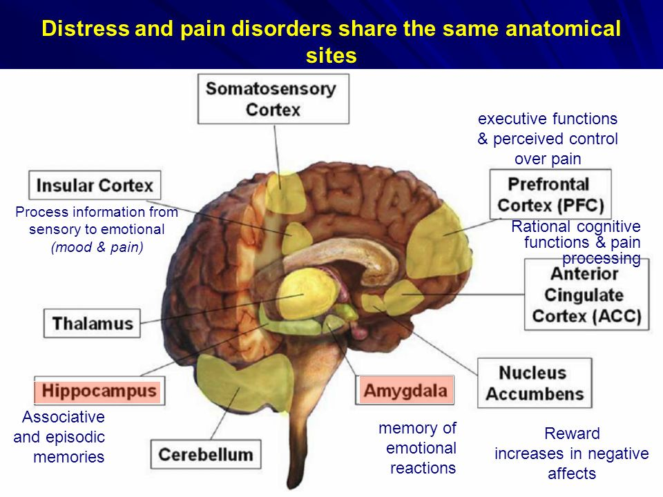 Distress and pain disorders share the same anatomical sites