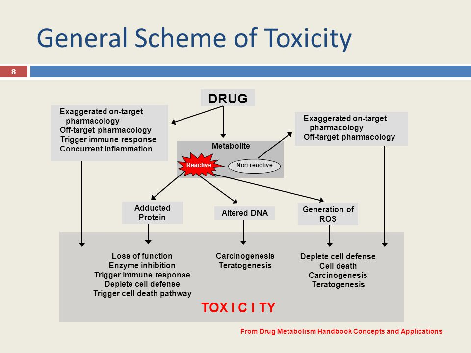 General Scheme of Toxicity