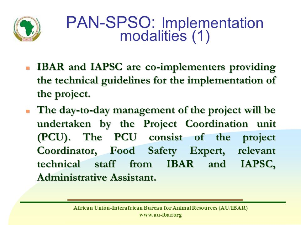 PAN-SPSO: Implementation modalities (1)