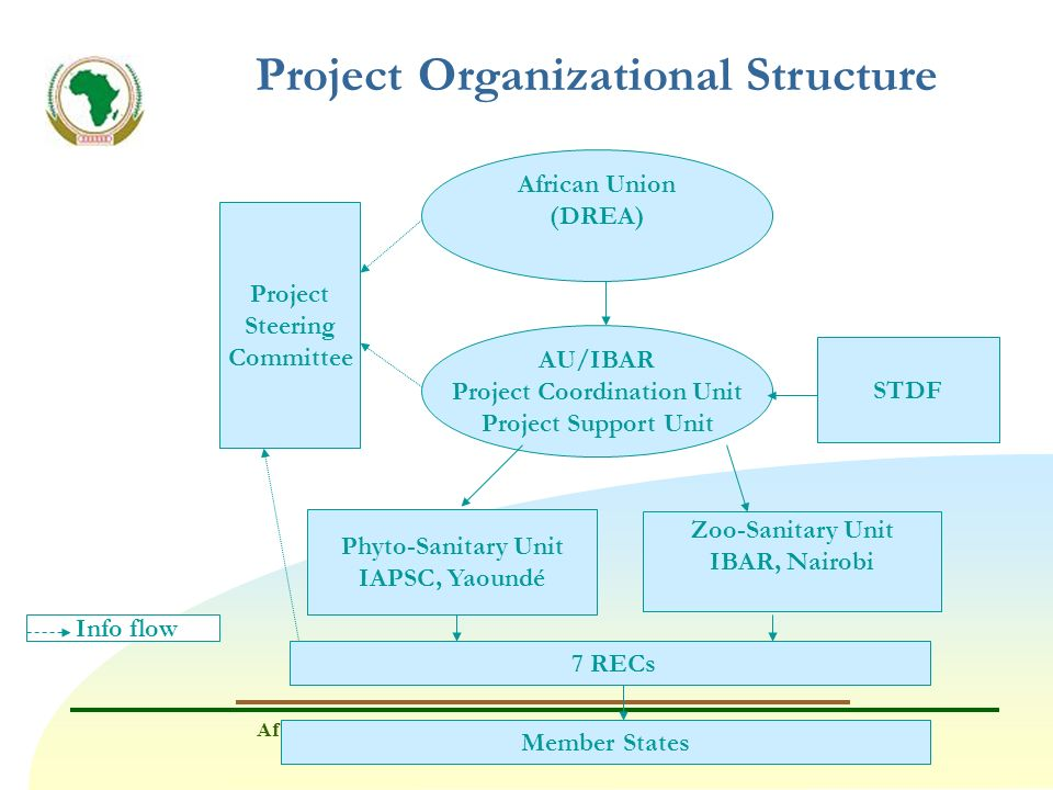 Project Organizational Structure Project Coordination Unit