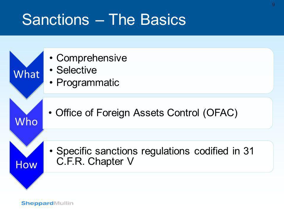 Sanctions – The Basics Comprehensive Selective Programmatic