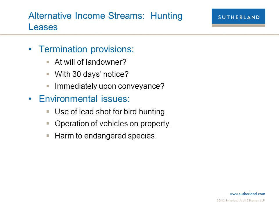 Alternative Income Streams: Hunting Leases