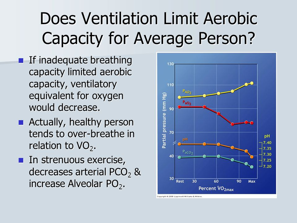 Does Ventilation Limit Aerobic Capacity for Average Person