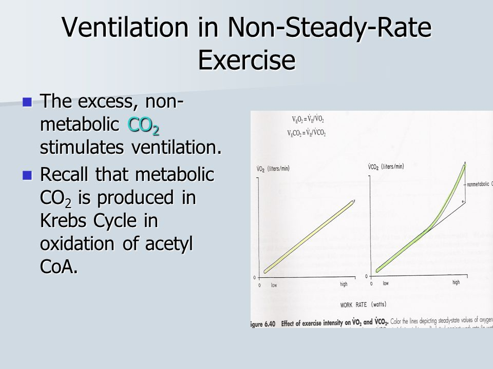 Ventilation in Non-Steady-Rate Exercise