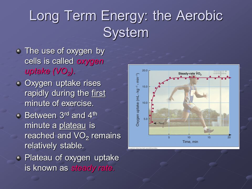 Long Term Energy: the Aerobic System