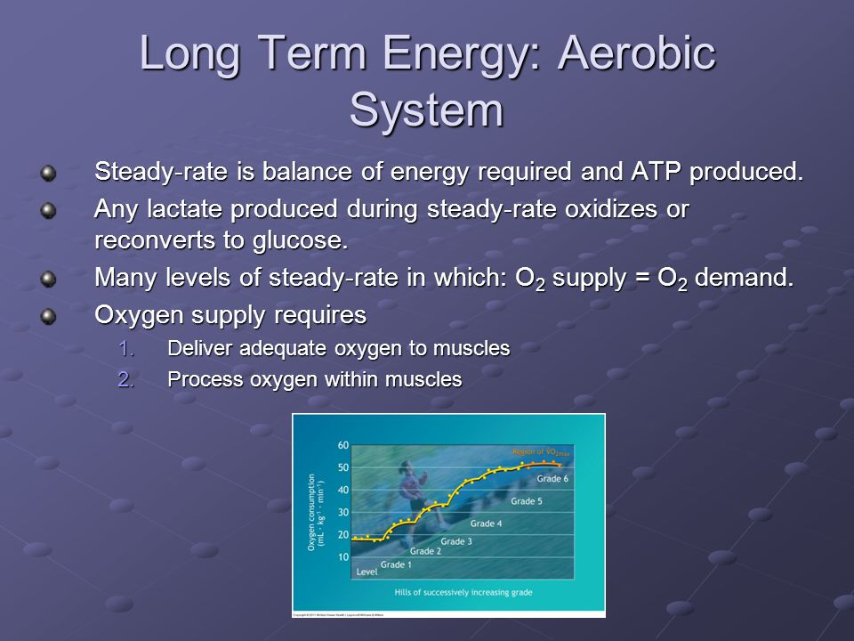Long Term Energy: Aerobic System
