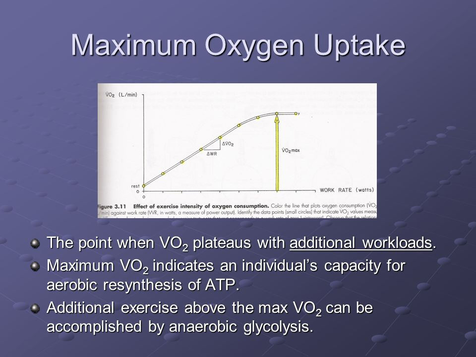 Maximum Oxygen Uptake The point when VO2 plateaus with additional workloads.