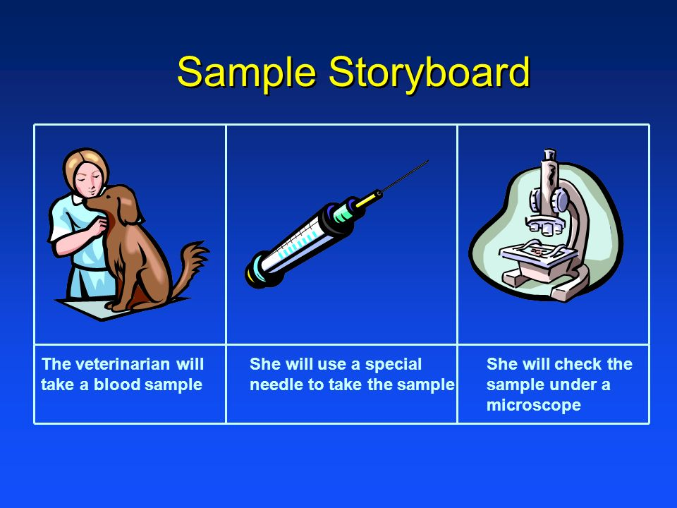 Sample Storyboard The veterinarian will take a blood sample