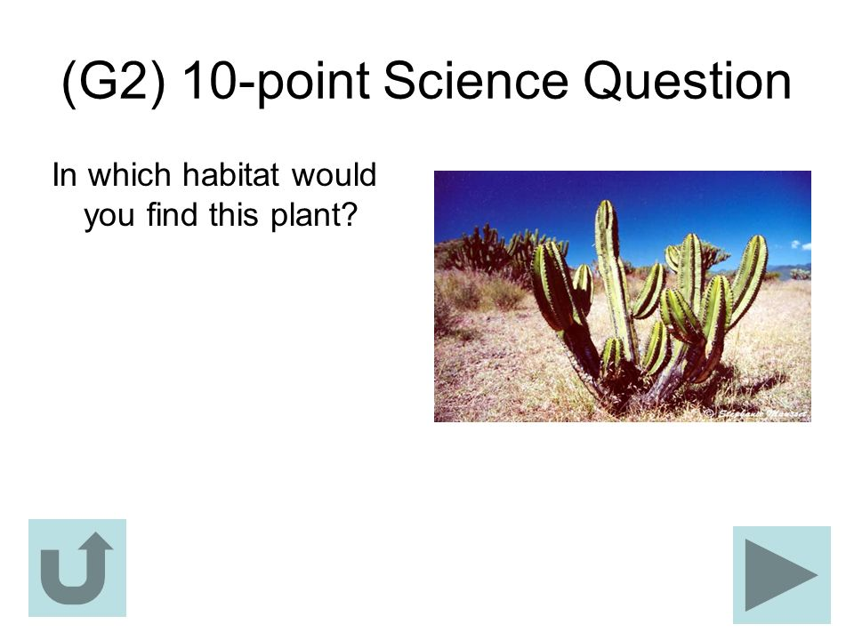 (G2) 10-point Science Question