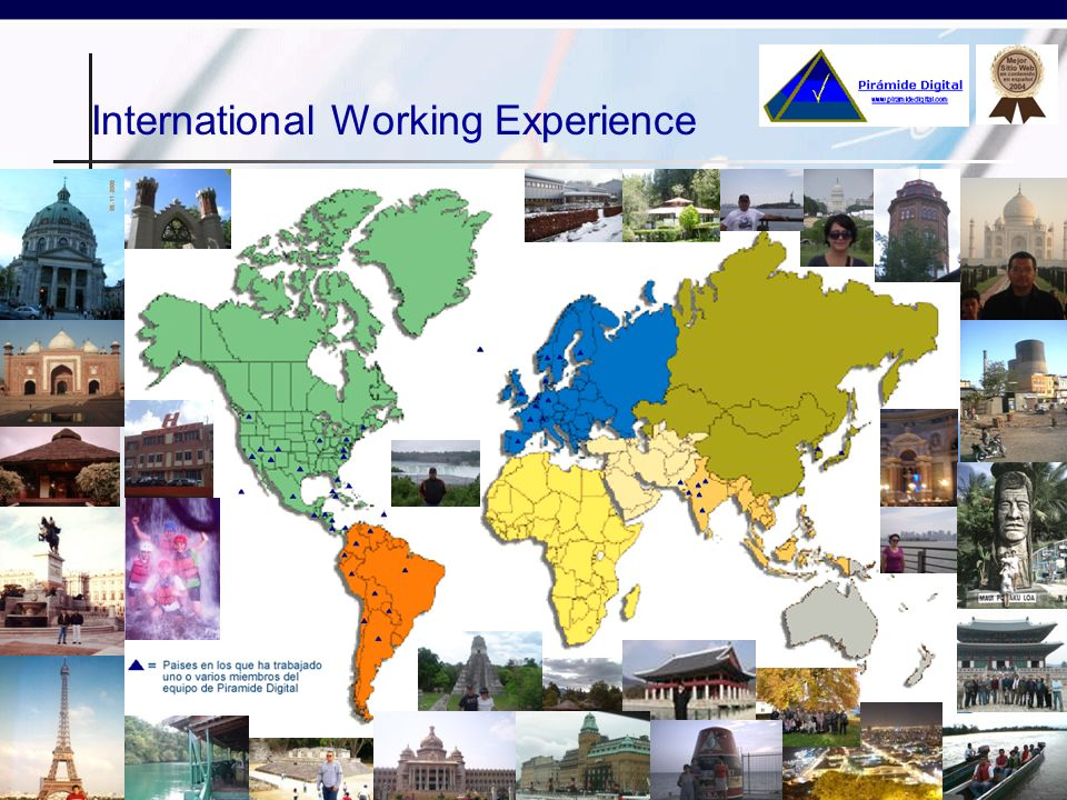 International Working Experience