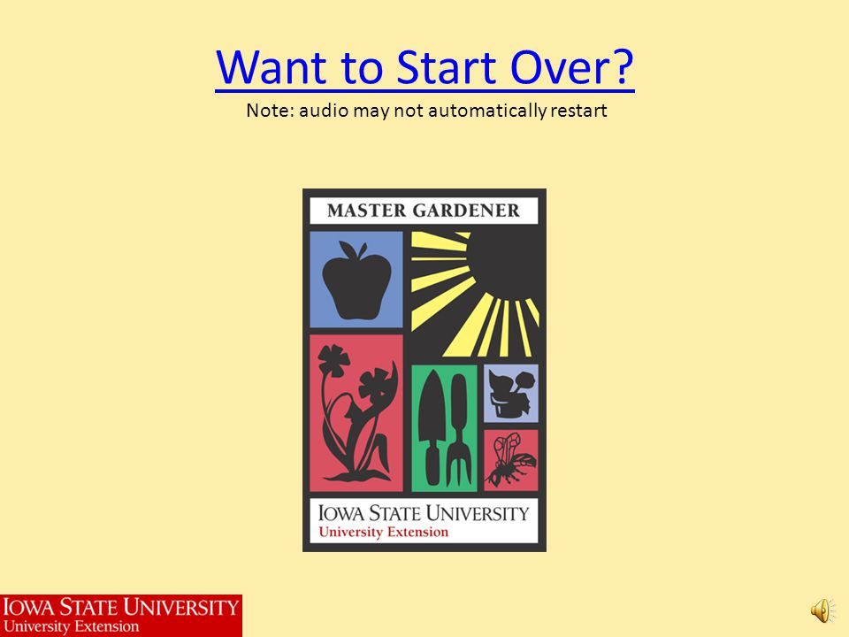 Want to Start Over Note: audio may not automatically restart
