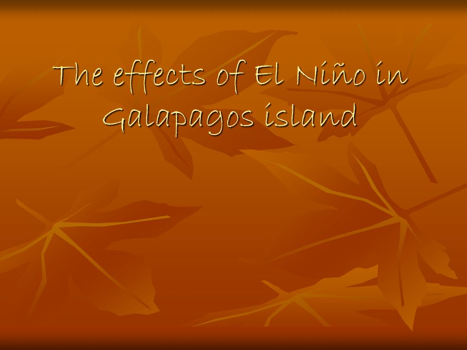 The effects of El Niño in Galapagos island