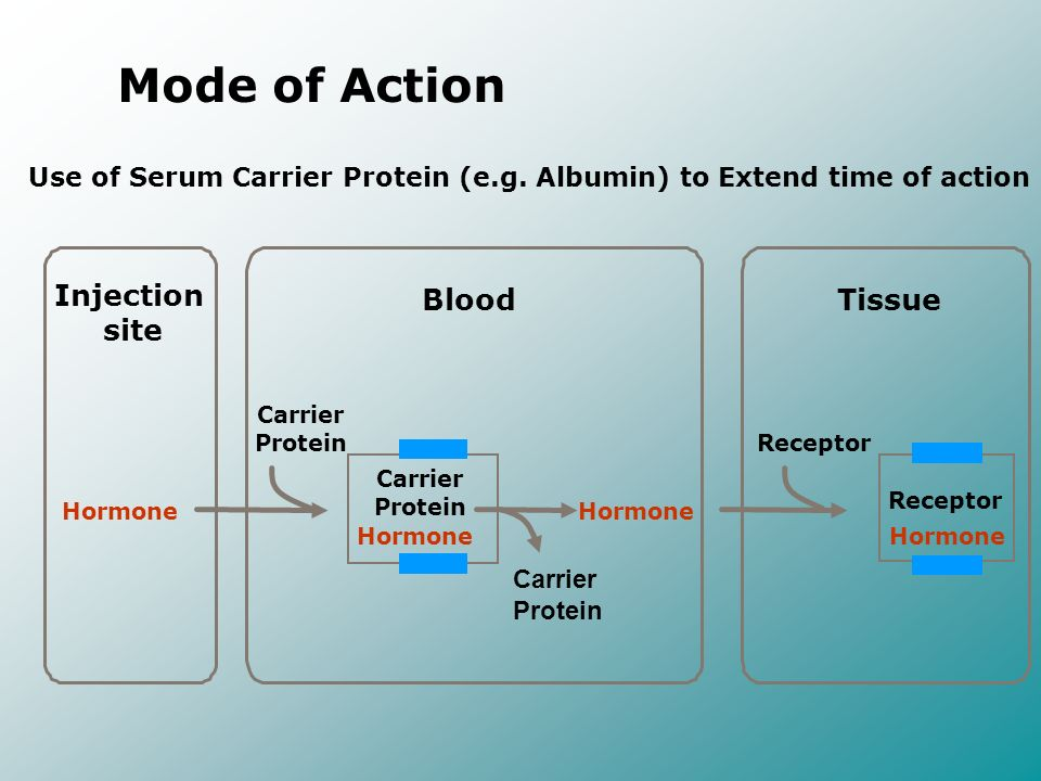 Mode of Action Injection site Blood Tissue