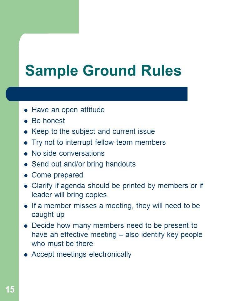 Sample Ground Rules Have an open attitude Be honest