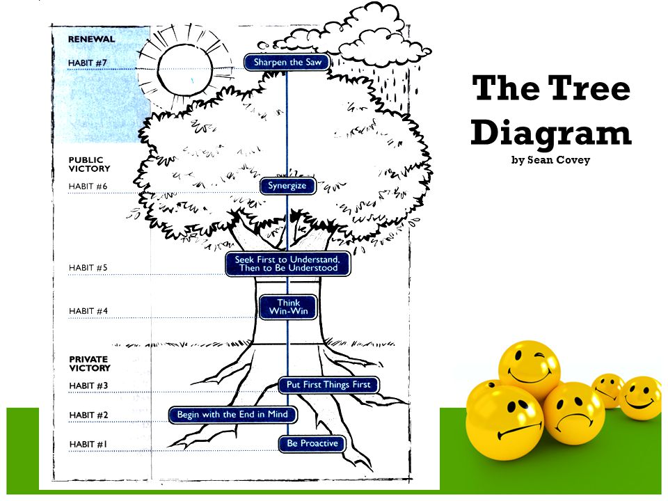 The Tree Diagram by Sean Covey
