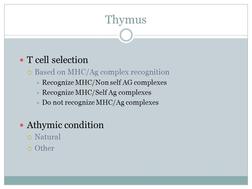 Thymus T cell selection Athymic condition