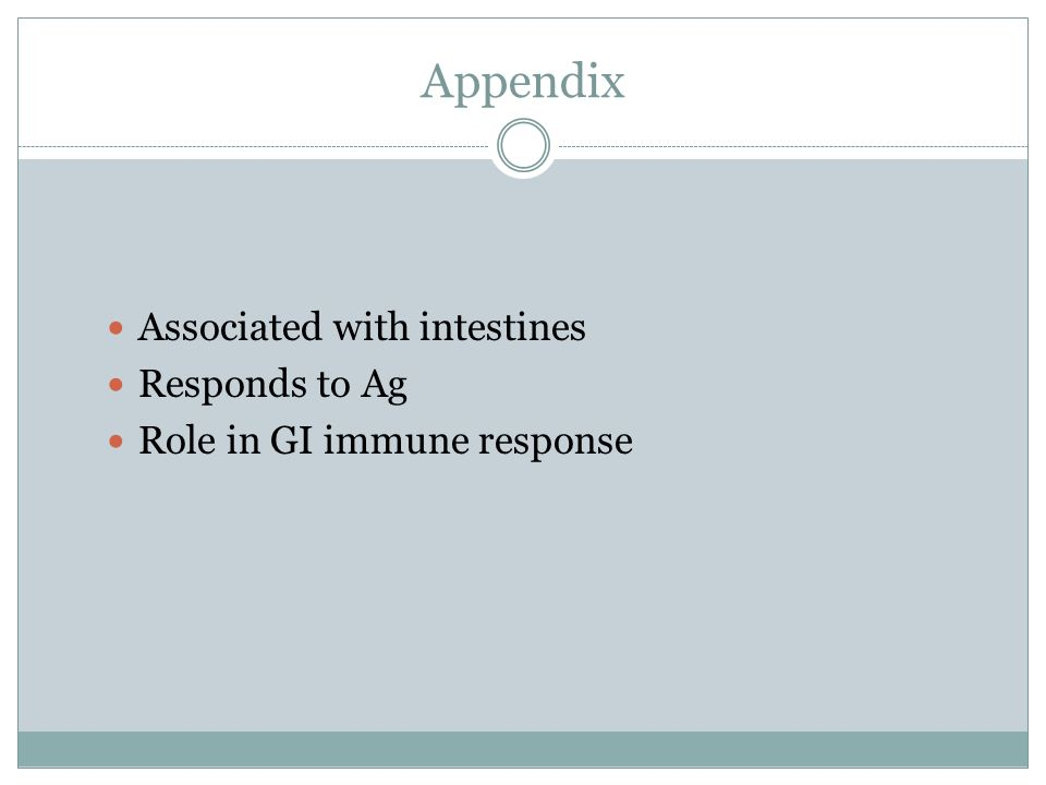 Appendix Associated with intestines Responds to Ag