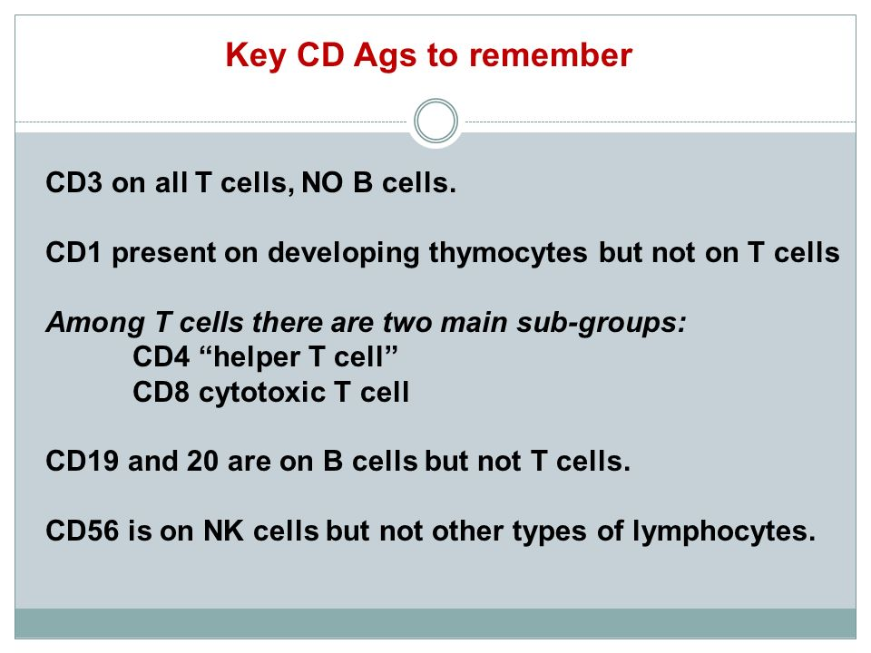 Key CD Ags to remember CD3 on all T cells, NO B cells.