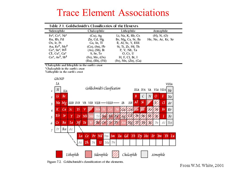 Trace Element Associations