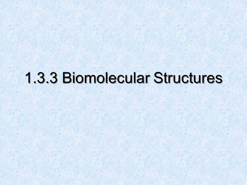 1.3.3 Biomolecular Structures