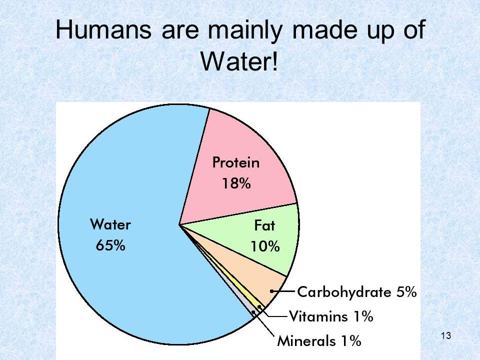 Humans are mainly made up of Water!