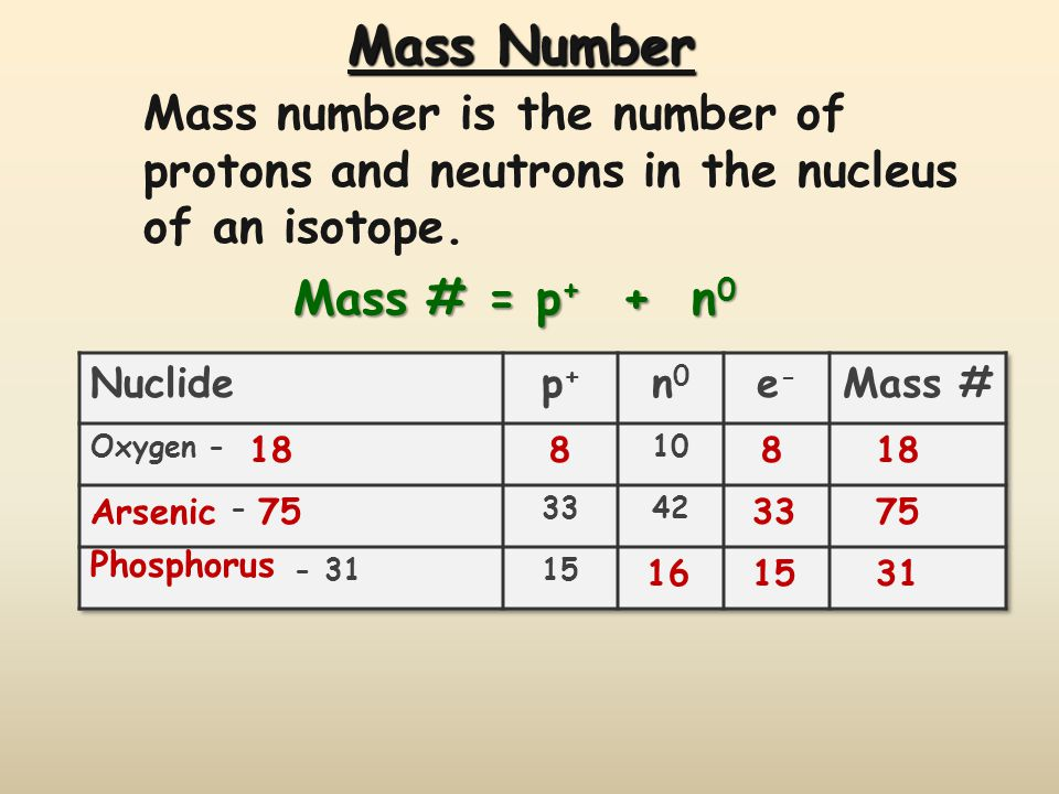Mass Number Mass number is the number of protons and neutrons in the nucleus of an isotope. Mass # = p+ + n0.
