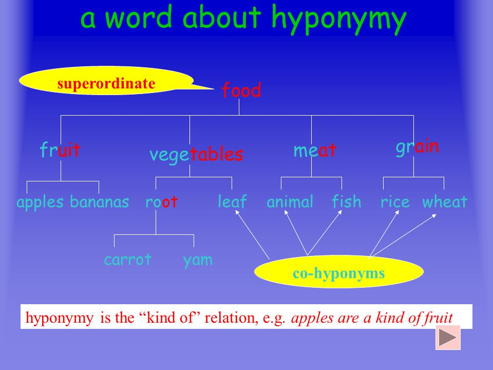a word about hyponymy food grain fruit meat vegetables superordinate