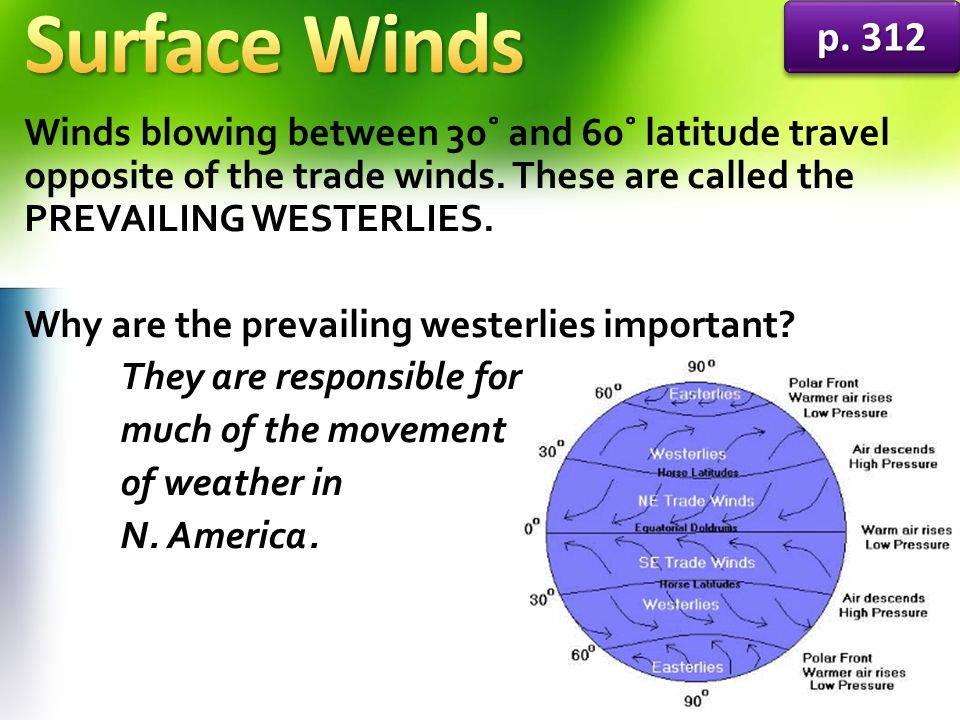 Surface Winds p Winds blowing between 30˚ and 60˚ latitude travel opposite of the trade winds. These are called the PREVAILING WESTERLIES.