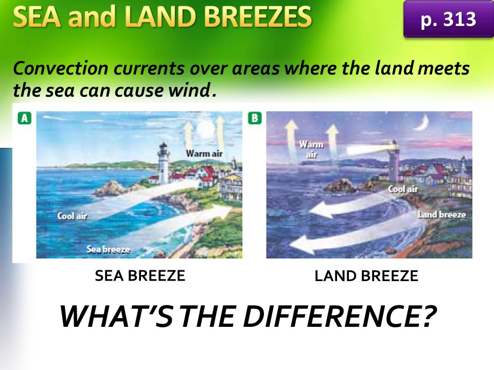 SEA and LAND BREEZES WHAT'S THE DIFFERENCE p. 313
