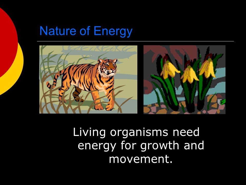 Living organisms need energy for growth and movement.