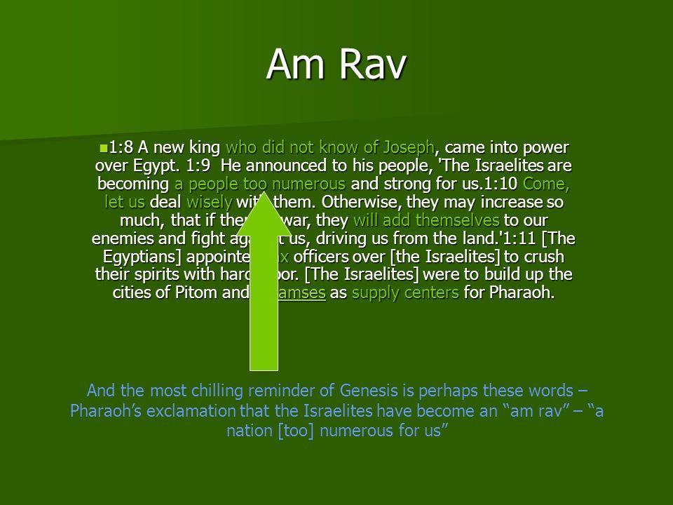 Am Rav