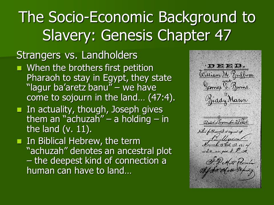 The Socio-Economic Background to Slavery: Genesis Chapter 47